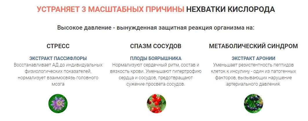 Официальный сайт производителя Neokard в Димитровграде
